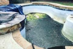 green pool 4