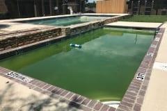 green pool 6